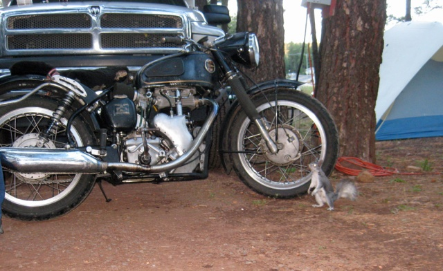 Back at camp, Bertie checks out the spokes on the Venom